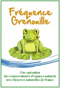logo-frequence-grenouille-2013
